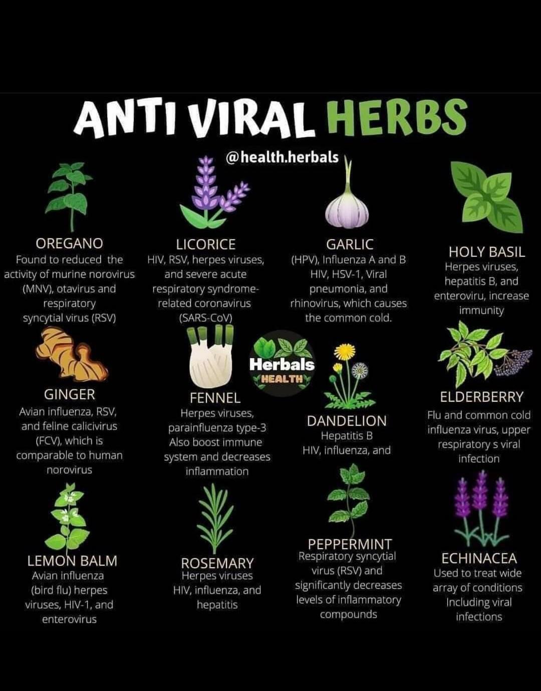Herbs Benefits