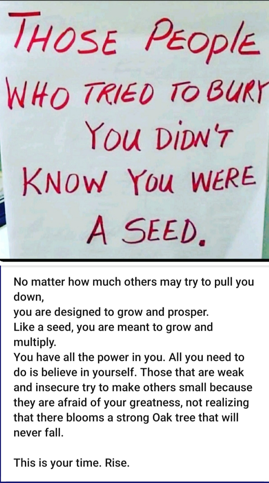 Be the Seed!